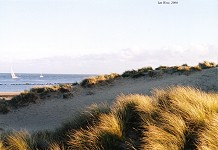 Eroded dunes, Shell Bay