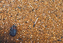 Magnetite pebble on the Chesil Beach