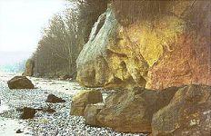 Eocene sandstone, Redend Point