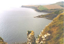 View west from St Aldhelm's Head