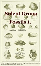 Solent Group Fossils