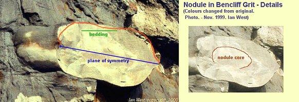 symmetrical nodule - details