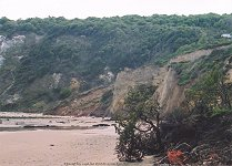Reading Formation, Palaeocene, Whitecliff Bay, Isle of Wight