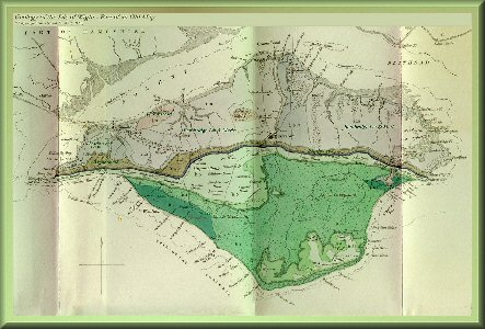 Old geological map of the Isle of Wight